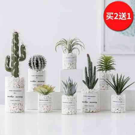 Ins Nordic potted cactus fleshy artificial plant decoration fake flower desktop green plant small ornaments indoor living room