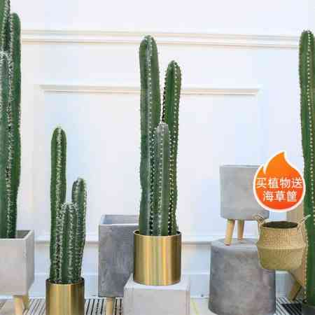 Nordic simulation fairy pillar potted decorative green plants indoor living room landscaping cactus large tropical fake plants